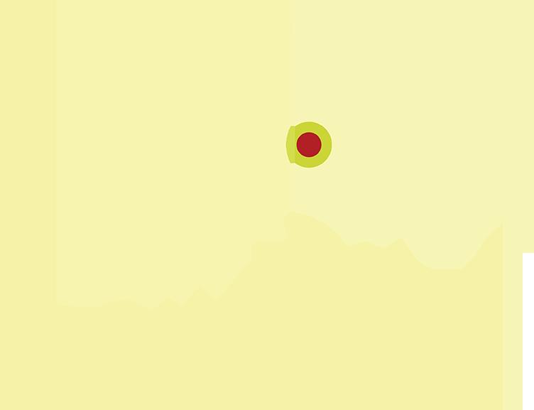 La-Lyn Map Tinted