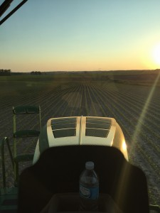 Loving the view from the cab on this lovely evening!